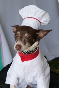 Chef Eddie from the Doggie Bag Cafe