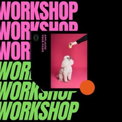 dog workshop