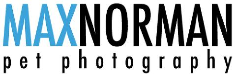 MaxNorman Pet photography