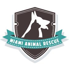 miami animal rescue